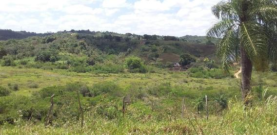Área Em Aldeia, Paudalho/pe De 0m² Para Locação R$ 6.500,00/mes - Ar374367