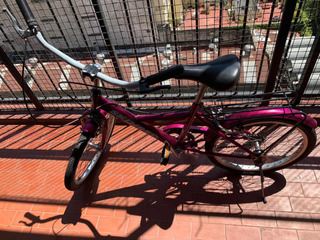 Bicicleta Skinred Rosa