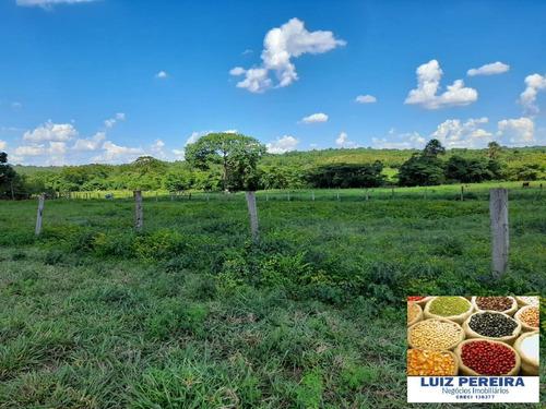 Fazenda Á Venda Em Fátima - To - De 420 Alqueirões (dupla Aptidão) - 1608