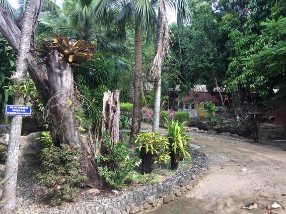 Zoologico En Puerto Plata N3901