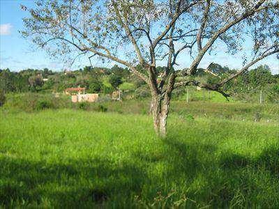 Chácara Com 3 Dorms, Campo Do Meio, Araçoiaba Da Serra - R$ 300 Mil, Cod: 3515 - V3515