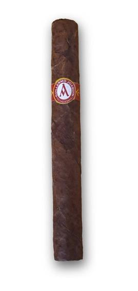 Habanos / Cigarros / Puros Corona Guillermo Joaquín X25u.