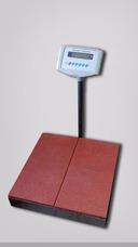Fabricación De Balanzas De Plataforma Aprobadas Por Sencamer