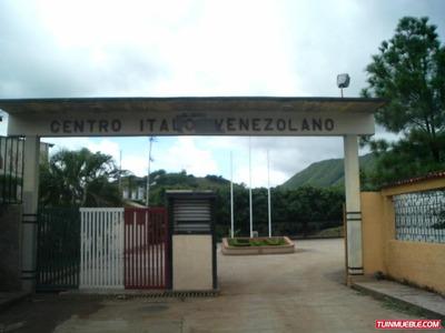 Italo Venezolano 04129828534