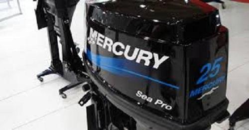 Motor Fuera De Borda Mercury 25 M Sea Pro