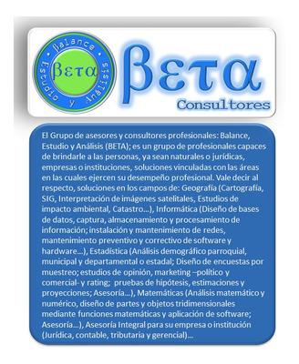 Consultor Asesor Auditor Estadística Geografía Informática