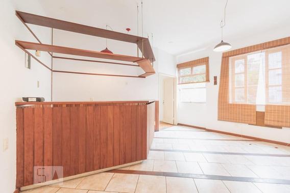 Apartamento Para Aluguel - Santa Teresa, 1 Quarto, 30 - 893016665