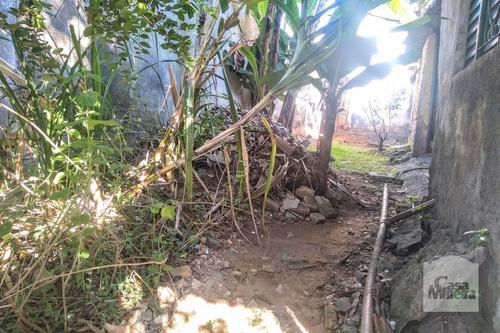 Imagem 1 de 9 de Lote À Venda No Santa Cruz - Código 246603 - 246603