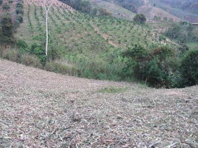 Finca En Venta Lebrija - La Aguada -27.000m2-código(659)