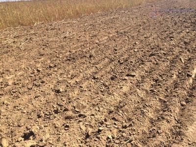 Fazenda Rural À Venda, Centro, São Felix Do Araguaia. - Codigo: Fa0050 - Fa0050