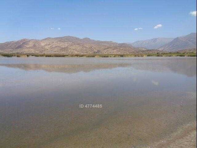 Medialuna Laguna De Batuco