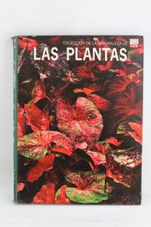 R671 Coleccion De La Naturaleza De Time Life -- Las Plantas