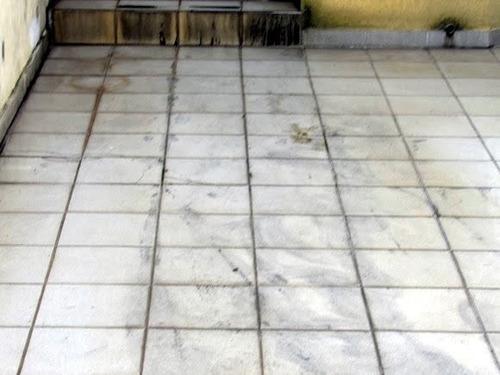 Imagem 1 de 12 de Casa Sobrado Para Venda, 3 Dormitório(s), 88.0m² - 2439