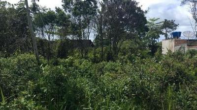 Terreno Em Itanhaém Com 312m², Ficando Lado Praia, Ref 4845