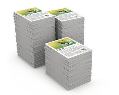 Impresión Y Multicopias De Documentos Color Y B/n