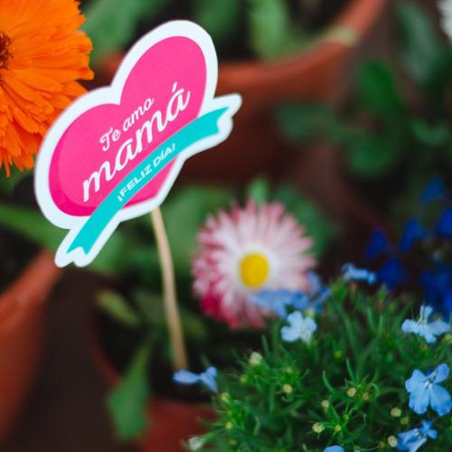 Imagen 1 de 5 de Set De Etiquetas/tags Imprimibles Día De La Madre - 16 U.