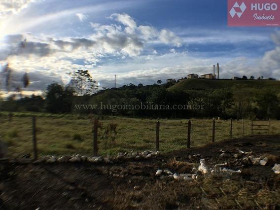 Terrenos Em São José Dos Campos - 333