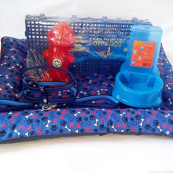 Colchonete + Sanitário Deck Dog +peitoral + Comedouro Autom