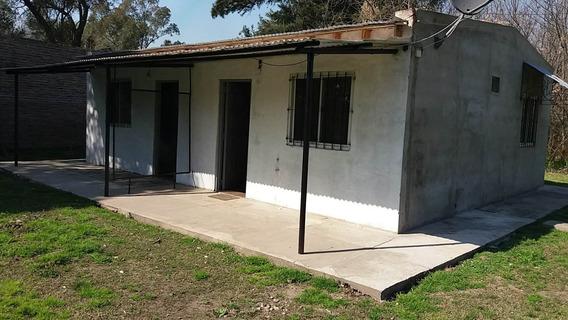 Apartamento En Alquiler. 2 Amb. 1 Dor. 50 M2. 50 M2 Cub