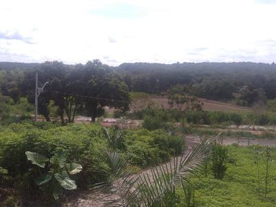 Chácara Para Comprar No Zona Rural Em São Gonçalo Do Pará/mg - 4432