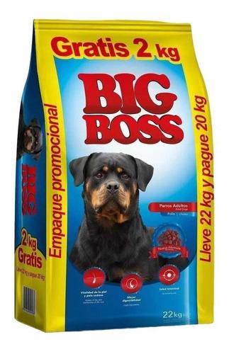 Imagen 1 de 2 de Big Boss Adulto 20+3kg (23kg Total)