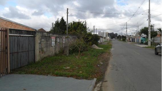 Terreno Para Venda Em São José Dos Pinhais, Sao Marcos - 302028001_2-896228
