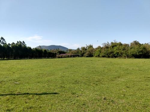 Chácara 10.000 M² - Estância Antiga - Gravataí - Rs - 2242 - 34462324