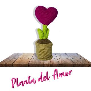 Planta Del Amor