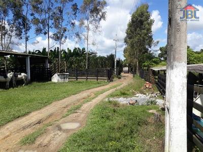 Fazendas À Venda Em União Dos Palmares/al - Compre O Seu Fazendas Aqui! - 1412785