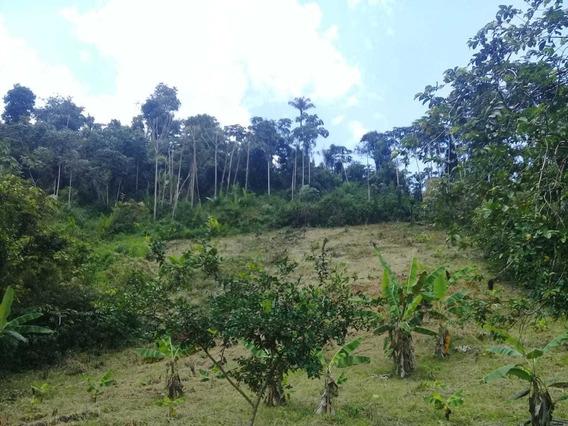 Terreno Na Vila De Canoas Med. 30x120. Presidente Figueiredo