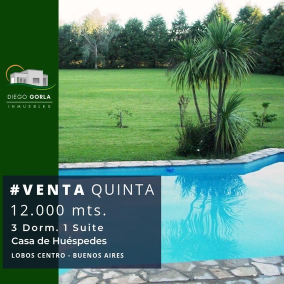 #venta Casa Quinta De 12000 Mts. Lobos - Buenos Aires