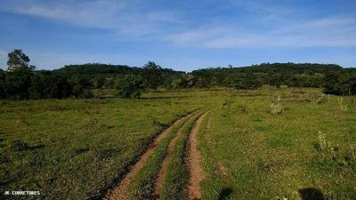 Área Rural Para Venda Em Inocência - Kj019