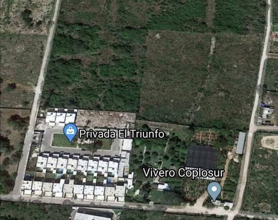 Terreno Para Desarrollo Residencial - Santa Gertrudis Copo