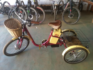 Triciclo Modelo Elektra Marca Dream Bike