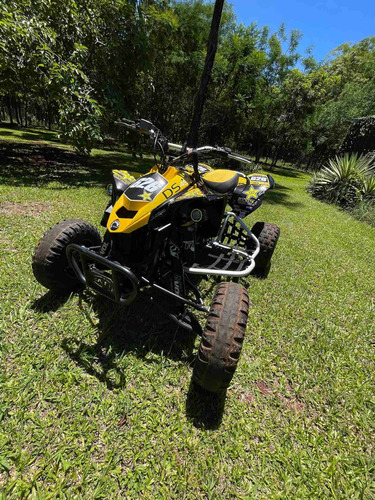 Canam Ds450