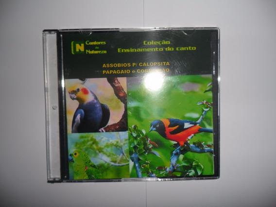 Cd - Calopsita, Papagaio E Corrupião
