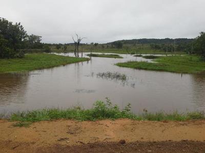 Fazenda Em São José Do Couto - Mt, Dupla Aptidão - 322