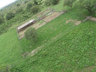 Fazenda Em São Felix Do Araguaia - 3.000 Hectares