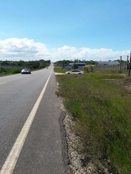 Terreno Na Estrada Da Cascalheira - Camaçari - Te00050 - 4445343