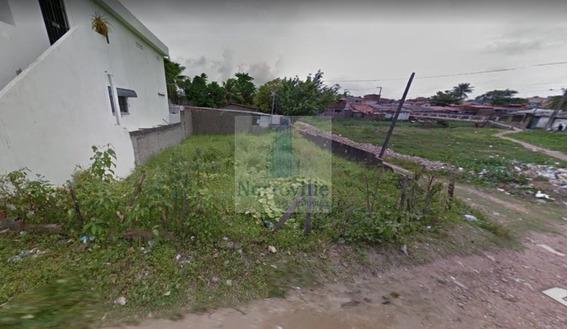 Ótimo Terreno Em Rio Doce - Tr-04