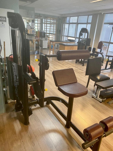 Academia Profissional Olympikus Aparelhos Musculação