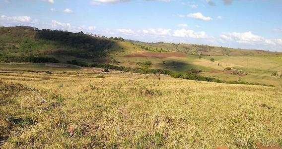 Fazenda Em Londrina | 27,0 Alqueires (65,3 Hectares)