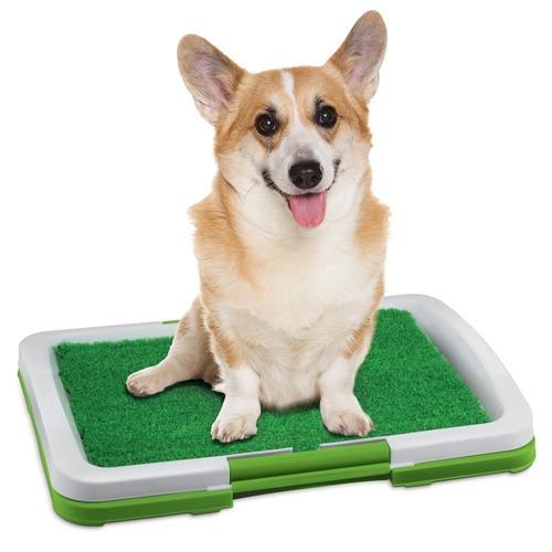 Imagen 1 de 5 de Baño Ecologico Puppy Potty Pad