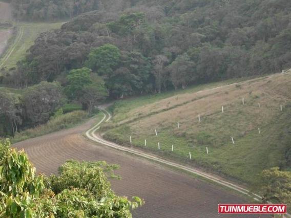 Terrenos En Venta Cubiro,quibor,lara Rah Co