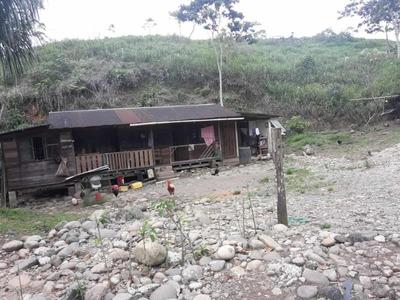 Vendo Hacienda Ganadera De 200 Hectáreas