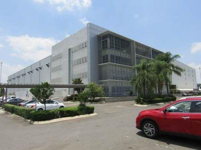 Excelentes Oficinas Brandfield Campus A Pocos Metros De López Mateos