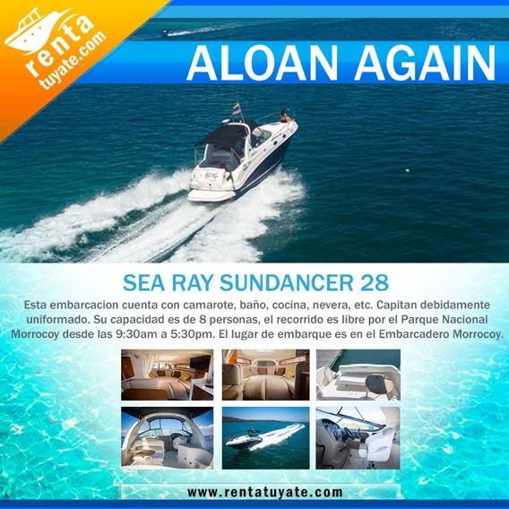 Alquiler Lanchas Y Yates Sea Ray Sundancer 280