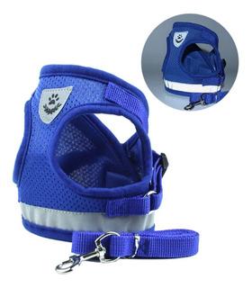 Collar Correa Chaleco Arnes Para Mascota Perro Gato Azul
