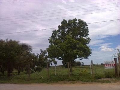 Rural Para Venda, 0 Dormitórios, Parque Aurora - Campos Dos Goytacazes - 1530