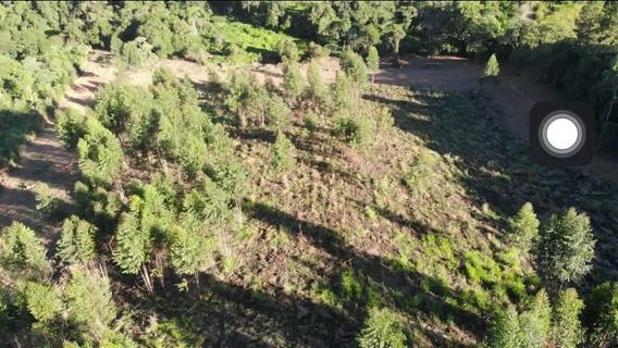 Rd Vendo Terreno Barato